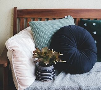 Cushions and plant on a bench